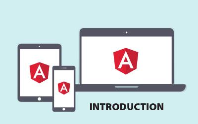 Introduction to Angular Programming Training